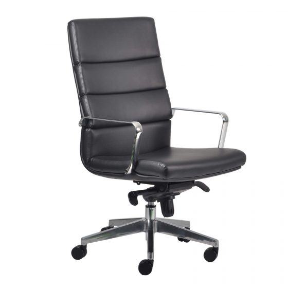 Director | High back ergonomic executive chair with arms aluminium base