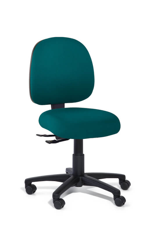 Petite ergonomic Task chair with Inca medium back